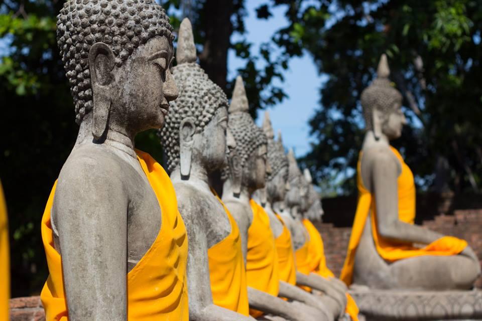 Ngồi thẳng như tượng Phật composite: Thiền không chỉ là một bài tập tâm trí; đó là một bài tập thể dục trí óc.