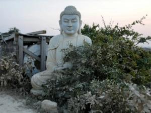 Bức tượng Phật hiếm hoi bị phá hoại ở Pakistan gần 1.700 năm tuổi
